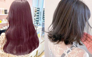 パーソナルカラーで導く、必ず似合う髪色!イエベ・ブルベさんのヘアカタログ