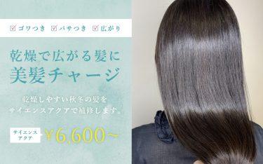 乾燥しやすい秋冬の髪をサイエンスアクアで補修して美髪に!