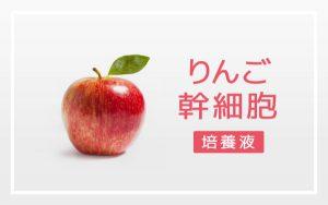 りんご幹細胞培養液